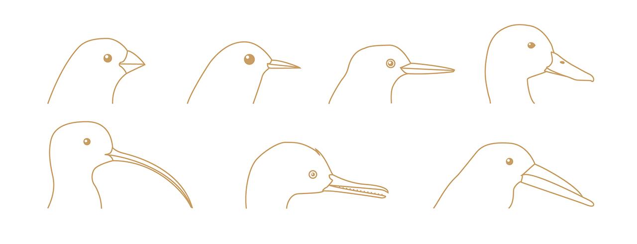 Illustration pour le livre B. Violier «Le Gibier»